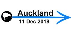 arrow-blog-auckland