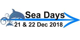 arrow-blog-seadays